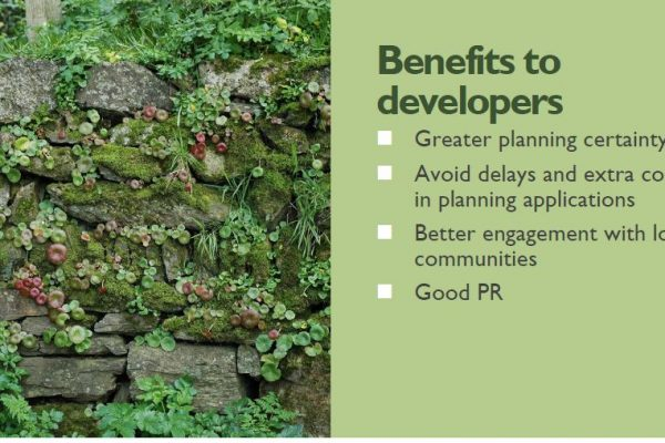 Benefits to Developers 600x400 - Vision